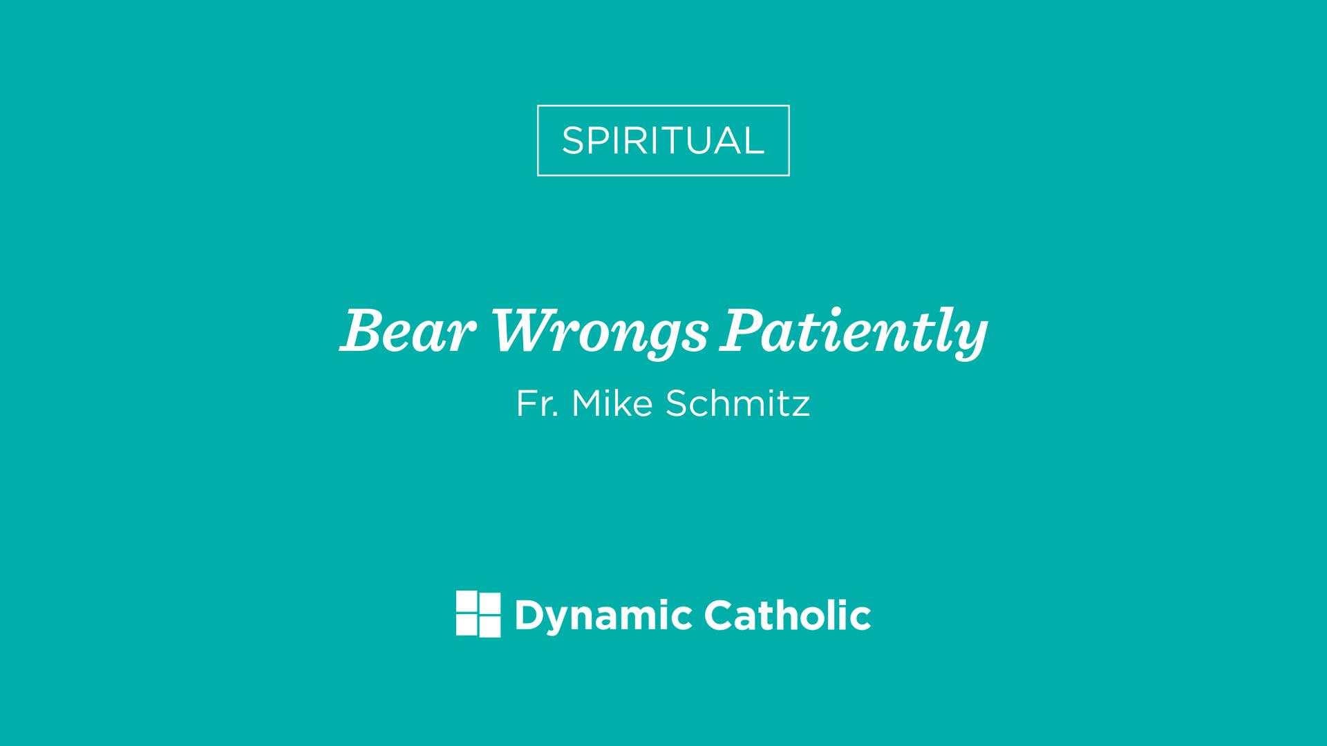bear wrongs patiently - HD1920×1080