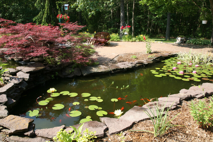 Small Patio Fish Ponds