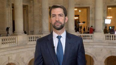 senator-tom-cotton