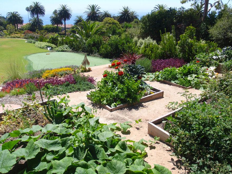 Raised Vegetable Garden Drip Irrigation
