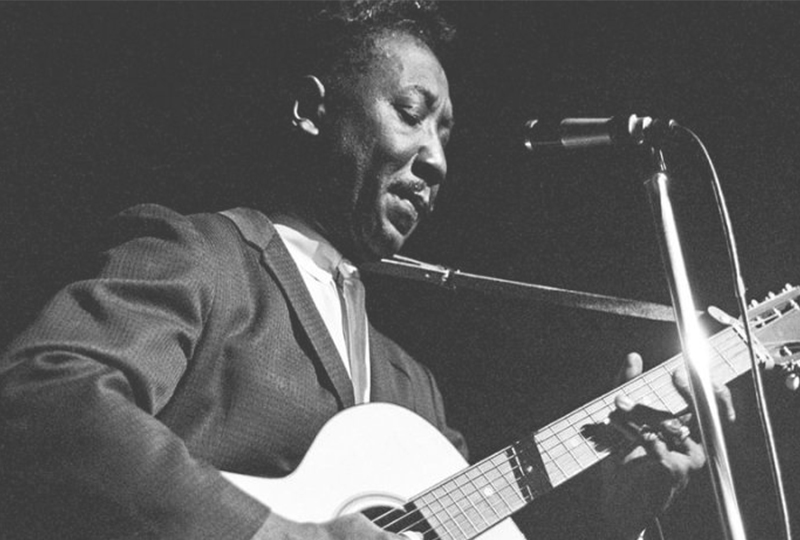 Muddy Waters I Just Want Make Love You