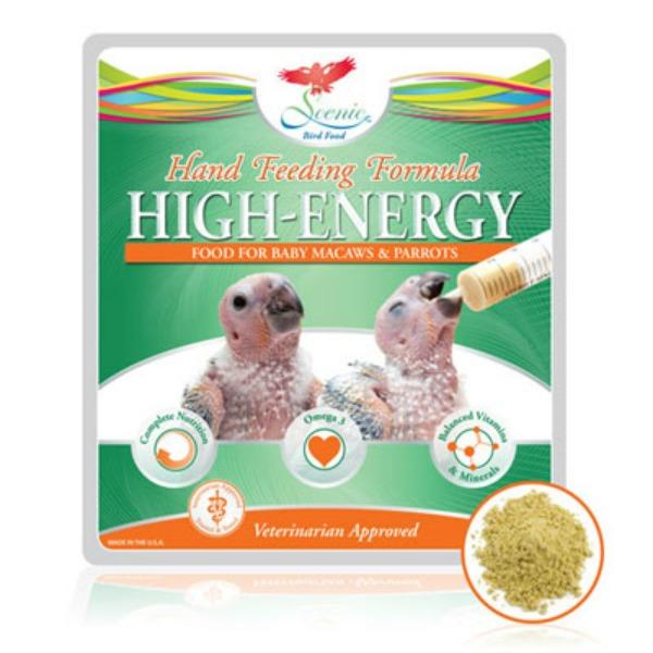 Hand Feeding Baby Bird Formula