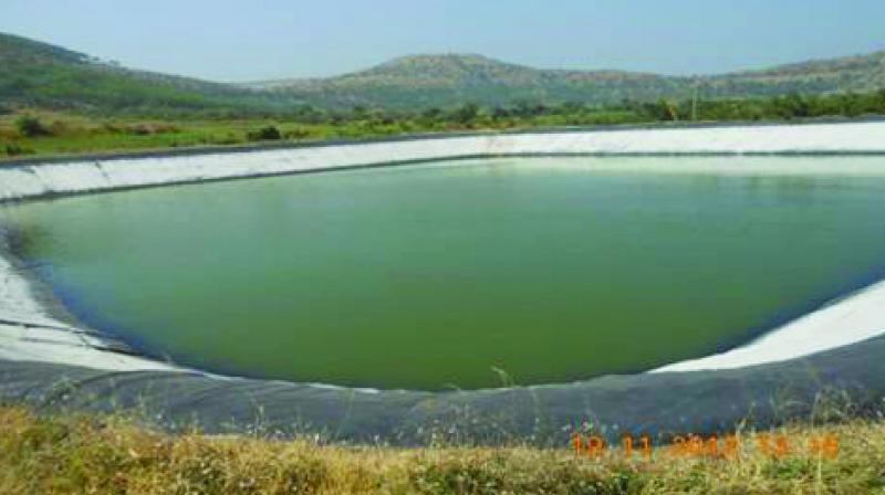 Farm Pond Maharashtra