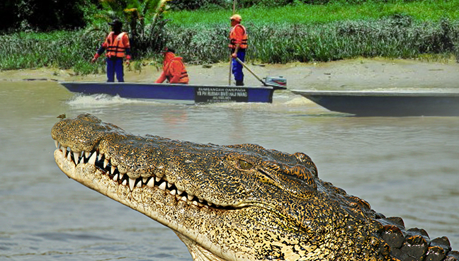 man eaten by crocodile - 648×369