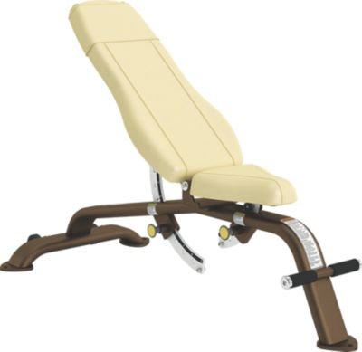 Adjustable 10 176 To 80 176 Bench Cybex