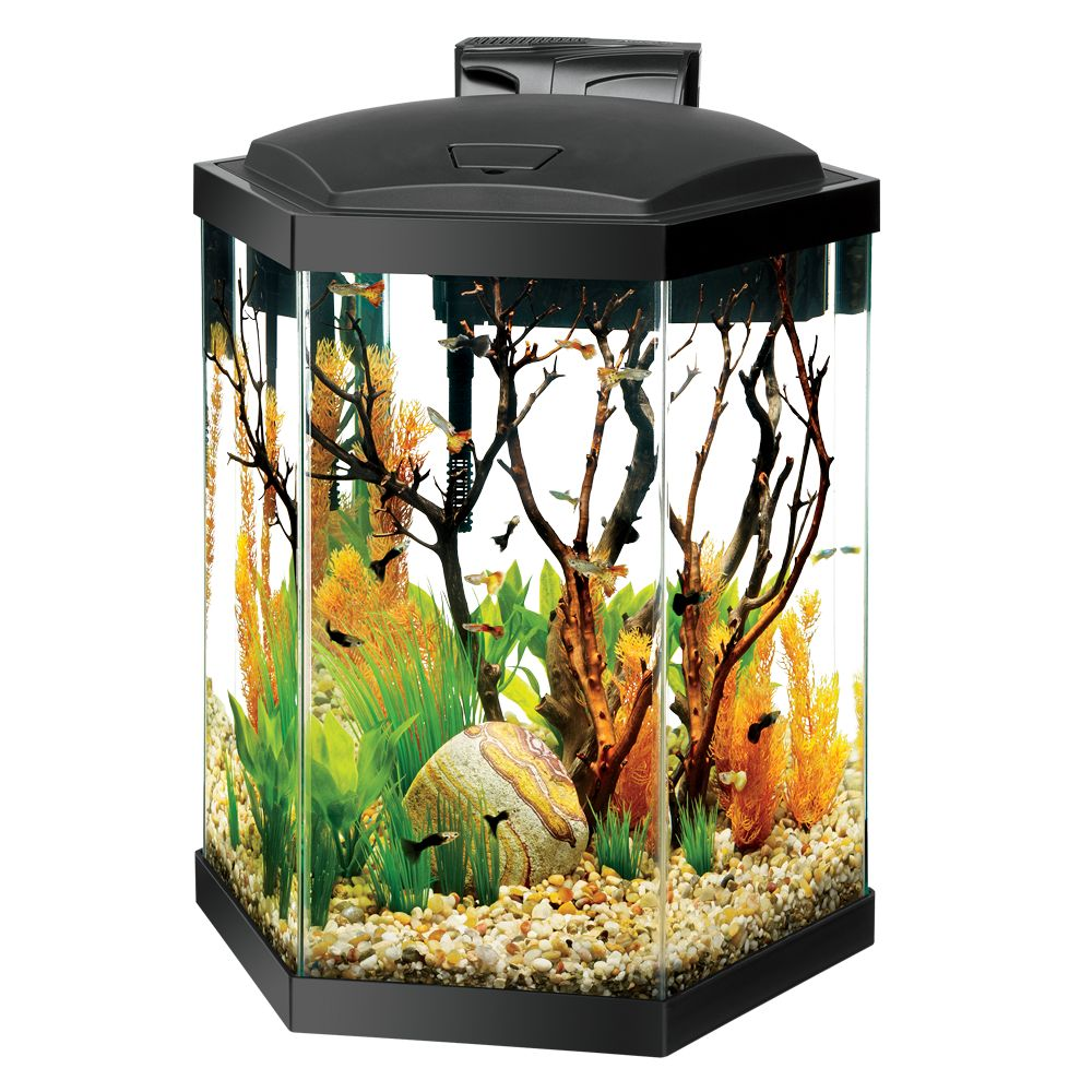 Starter 30 Aquarium Kit Gallon