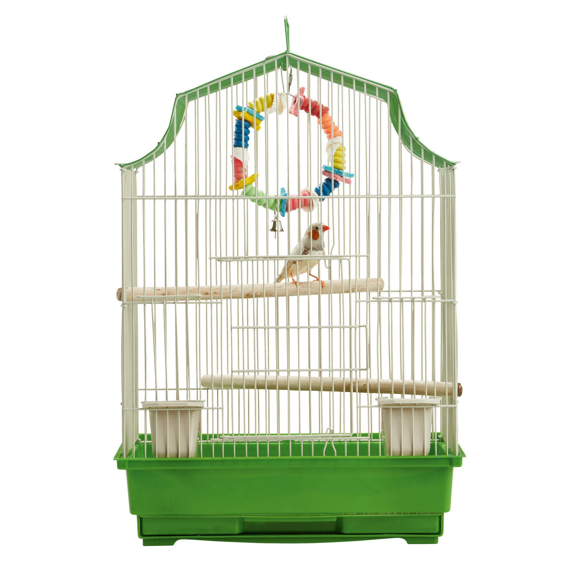 Parrots Bird Petsmart Cages