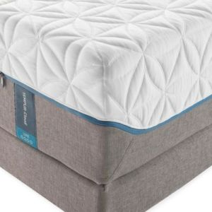 Buy TEMPUR Mattresses from Bed Bath   Beyond TEMPUR PEDIC     TEMPUR Cloud     Luxe Split King Mattress
