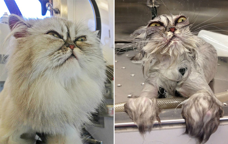 Before And After Bath
