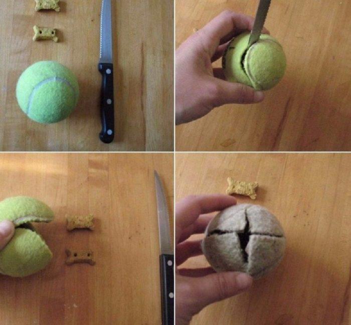 Den snabbaste och enkla i tillverkningen av en leksak för husdjur - från en tennisboll