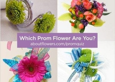 Which Prom Flower Are You?