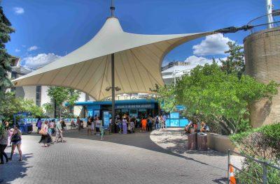 New York Aquarium's Newest – The 18 Pound Lobster | SAllan ...