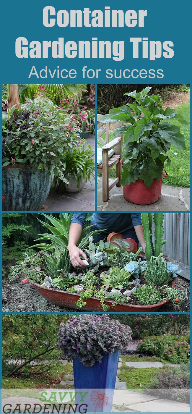 Best Soil Mix Raised Vegetable Garden