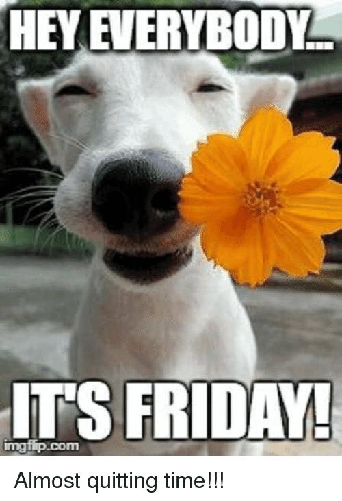 20 Happy Memes That Scream Quot It S Friday Quot Volume 2