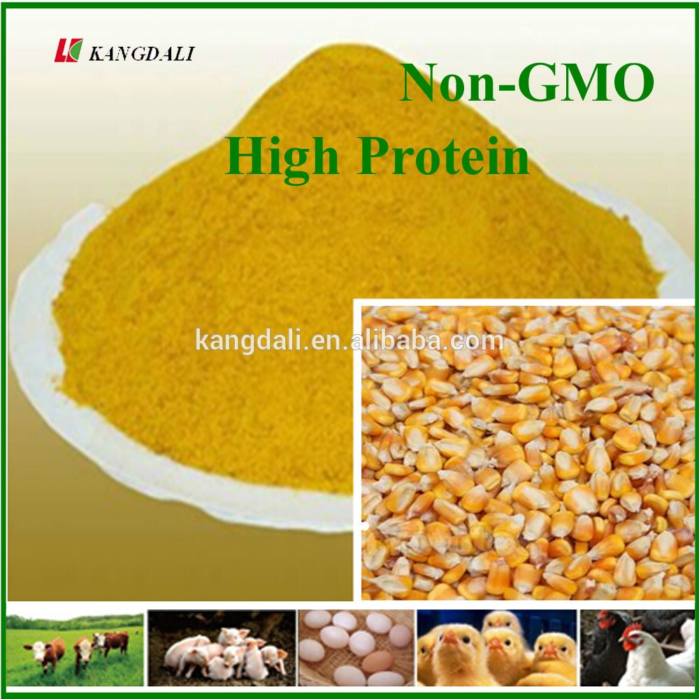 Good Price Yellow Corn Gluten Meal 60% For Poultry Food ...