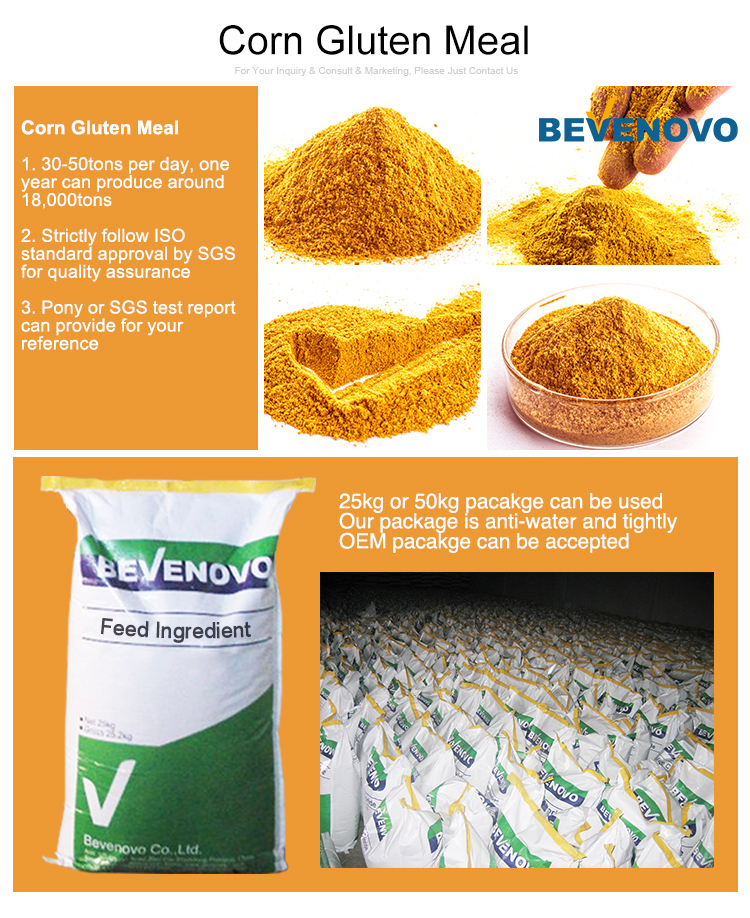 Corn Gluten Meal For Sale 65% Protein With Competitive ...