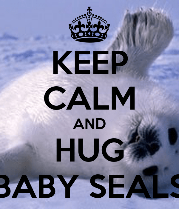 Keep Calm And Hug Bear