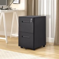 Keep all your files and paperwork organized and safely tucked away with this mobile filing cabinet. It features a simple yet clean style crafted from strong steel, which is perfect for your home office or workstation. This filing cabinet sits on 5 caster wheels for stability, 2 of which can lock in place. Both drawers can be locked via the interlocking drawer system. This filing cabinet comes fully assembled except caster wheels.