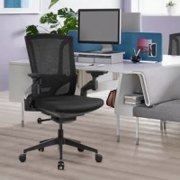 Blending form and function into one must-have design, this stylish desk chair is a lovely addition to any office space. Whether you're settling in for a long day at work or just sitting down for a quick study session, the right chair is key. Its plastic frame strikes a design that suits modern and contemporary home offices, and caster wheels allow you to glide this piece too and fro with ease. With the most intelligent 4d armrest adjustment, you can adjust the armrest height and various...