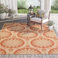 With its medallion pattern and floral accents, this rug is sure to add a touch of traditional style to your space – indoors and out! Power-loomed in Turkey from polypropylene, this piece resists fading, stains, and water, making it ideal for standing up to regular use on your patio or in your living room. Plus, since the pattern features a terracotta hue, it's ideal for adding a little warmth onto your floors. This rug features a 0.16'' pile height, making it easy to care for.