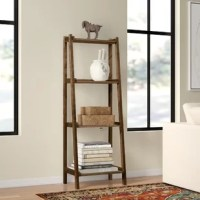 Whether you want to personalize your teen's room with accent pieces they love, or you just need a practical place to put towels and toiletries, this versatile ladder bookcase is an ideal option for your home. Crafted from solid birch wood, this piece features four slatted shelves that become deeper toward the base to accommodate items of all sizes. A neutral finish helps this design blend with a variety of color palettes and aesthetics, while its narrow frame allows it to fit easily in small...