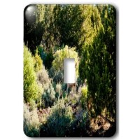 A Deer Just off the Road In Pine Valley, Utah Watching From a Distance In The Mountains Light Switch Cover is made of durable scratch resistant metal that will not fade, chip or peel.  Featuring a high gloss finish, along with matching screws makes this cover the perfect finishing touch.