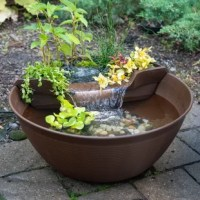 The mini pond kit makes it simple and easy to add the sights and sounds of a water garden to any location. Setup is quick and easy, simply place in your ideal location, add the planting substrate/biological filter media, finish with the decorative gravel, fill with water, and enjoy. If desired, a few small fish and a wide variety of plants can be added to create your very own one-of-a-kind aquatic paradise. The integrated plant and waterfall filter provide an ideal location for a variety of...