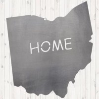 Proudly show off your favorite or home state with our new metal state signs! This makes an awesome accent piece to any home inside or out. They also make great gifts for a housewarming party, anniversary, holidays, or any other occasion!