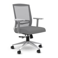 For a chair that hits all the marks at an incredible price. With a quality seat slider, locking synchro tilt, adjustable lumbar support and more, This task chair delivers all the reliability and functionality your workforce wants. The mesh back and contoured, molded seat cushion provides all-day comfort while the price delivers unbeatable value.