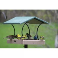 Attract a wide variety of beautiful birds with this Birds Choice fly-thru feeder, removable seed tray makes this feeder easy to clean and provides drainage to keep seed dry.