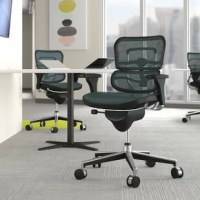 Whether you're working from home or having a long day at the office, this task chair is here to offer some support. Perched on five caster wheels for your convenience, this piece features a full swivel and an adjustable seat height for maximum mobility. The waterfall seat and included headrest are designed to promote lumbar support, while the mesh back offers an inviting feel. Plus, this chair is backed by a lifetime warranty.