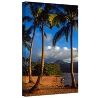 Kathy Yates 'Hanalei Bay Palms' gallery wrapped canvas is a high quality canvas that embodies the timeless appeal of natural landscape photography. Yates exposes this alluring Hanalei shore line so well, any spectator can nearly taste the salt in the air from this Hawaiian coast. The dream like quality of this piece will bring a sense of calm to any room.