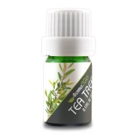 """More commonly known as """"Tea Tree,"""" Melaleuca essential oil has over 92 different compounds and limitless applications. The leaves of the Melaleuca tree were used by the Aborigines of Australia for centuries. They would crush the leaves and inhale the oil to promote feelings of clear breathing and apply the leaves directly to the skin for a cooling effect. Melaleuca is best known for its purifying properties. It can be used to cleanse and purify the skin and nails and to support a healthy..."""