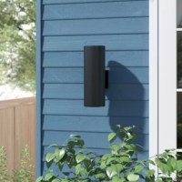 Abbey 2-Light Outdoor Armed Sconce