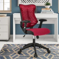 If you've never owned a mesh back chair, then you're in for a real treat with this black mesh ergonomic task chair. The ventilated design allows air to circulate to your back, keeping you cool and comfortable enabling you to concentrate on the task at hand and increasing your productivity. This chair has important features such as an innovative curved back with lumbar support, pneumatic seat height adjustment and the ability to recline/rock back and forth with the tilt lock mechanism that make...
