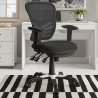 This attractive office chair is loaded with options to maximize your comfort and productivity. The transparent mesh back allows air to circulate, keeping you cool no matter how high the pressure gets. Built-in lumbar support helps prevent back strain and you can adjust the back height a full 2