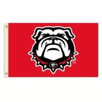 Show everyone that you are a die-hard fan by hanging up this Collegiate flag from B.S.I Products. This high-quality flag is decorated in the team colors and proudly displays the official team graphics in the center.