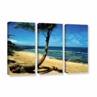 Palm Tree in Paradise by Kathy Yates 3 Piece Photographic Print on Gallery Wrapped Canvas Set.This canvas allows you to take in the beauty of a beachfront without having to leave the room. As this canvas reproduction is gazed upon just try not to imagine yourself with the sand between your toes and the gentle touch of water rushing up the shore.