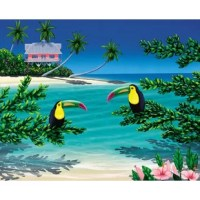 Pink House Paradise illustrates the perks of island living complete with a pink house on stilts and two toucans. Saturated blues, yellows, greens and pinks create a fun image by Dan Mackin. Gallery wrapped canvas.