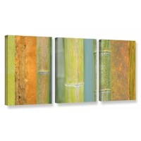 Cora Niele's Bamboo Green Orange, 3 Piece Gallery-Wrapped Canvas Set is a high-quality canvas print featuring a vivid display of colorful bamboo that will add a touch of warmth and serenity to any home or office.