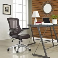 When it comes to settling in for a day of business in your home office, you want a seat that's going to give you the support you need while also contributing to your home's style. A desk chair like this is a great option for contemporary style with functional support and mobility. Crafted from a mesh back with lumbar support and faux-leather upholstered seat, it features an aluminum frame and pedestal base with five rolling casters. Flip-up armrests, a swivel seat and adjustable height allow...