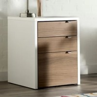 Sleek and stylish, this 3-Drawer Vertical Filing Cabinet is a great option to add utility to your workspace. Featuring a contemporary design, this file cabinet has a formal and elegant look that is hard to miss. Displaying clean cuts and a fine finesse, it proves to be a versatile option for both your study room and office cabin. It is space saving and can be easily accommodated in a room with minimal floor area. This 3-Drawer Vertical Filing Cabinet is constructed out of engineered wood and...