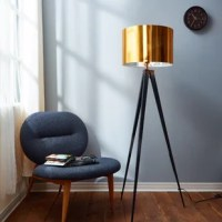 Bring home the ultimate staple in lamp design and fill your space with luxurious decor with the floor lamp. A lamp includes fabric and plastic casing to shield an E26 bulb while sturdy thick legs hold the lamp up and display it beautifully. Makes a unique accent piece and adds luminous color to any room that needs that extra touch.