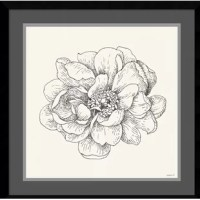 This delicately composed 'Pen and Ink Florals IV' Framed Painting Print offers a soft yet modern accent for any space. Elegant yet powerful, this piece can stand perfectly on its own amongst a minimal decor or blend easily with a variety of tones and textures, adding a touch of romance and creativity.