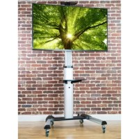 Heavy Duty TV Fixed Floor Stand Mount 37
