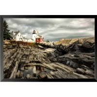 This professionally 'Reflecting Pool' Framed Photographic Print is great for any room in your home or office.