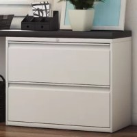 You can't get your work done if you can't find your files. Bring organizational appeal to your home office when you add this stylish and essential cabinet. The understated design and solid finish will help this piece blend in with any aesthetic, while the two ample drawers and adjustable leg levelers add essential function. Fill it with your important files, then set it against an open wall in your home office. If you want to craft a modern ensemble, you can pair it with a clean-lined wood...