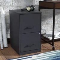 Filing cabinets are a necessity that isn't always the most attractive, but this one helps you store important papers in sleek style. Crafted from steel, it includes two file drawers with a letter filing system that is hanging file compatible. Both drawers can be secured with a lock, so your files can sit securely. Measures 24.5'' H x 14.3'' W x 18'' D, and is perfect for everywhere from your home office to your workplace.