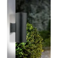 Kaitlyn 2-Light Outdoor Armed Sconce