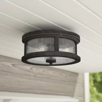 Looking to brighten up your porch or patio without going over the top? Keep things high and tight with this two-light outdoor flush mount! Simple and unobtrusive, this flush mount sports a classic lantern awash in a brownish-black finish with a clear seeded glass shade. Measuring just 13'' in diameter, it does the trick without taking away from architectural details and statement pieces.